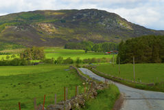 Scottish hill. A mountain in Scotland Royalty Free Stock Image