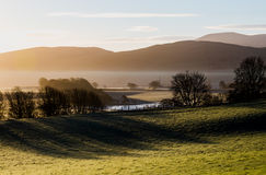 Scottish hills in golden houres lights with mist and long trees Stock Image
