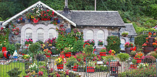 Scottish House. A Scottish house with colourful garden Stock Photography