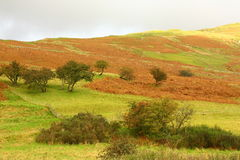Scottish landscape. With hills and trees in Autumn Stock Photography