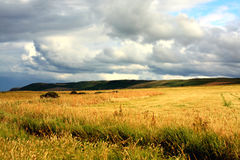 Scottish landscape with dramatic sky. And fields Stock Images