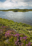 Scottish landscape with moorland and loch. Highlands. Scotland Royalty Free Stock Image