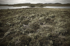 Scottish landscape with moorland and loch. Highlands. Scotland Stock Images