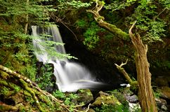 Free Scottish Landscapes - Waterfall In Aros Forest Park Royalty Free Stock Photo - 125542855