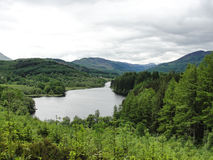 Scottish Loch in summer surrounded by green woods Stock Images
