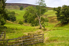 Scottish lowlands. Farm land and hills in perthshire scotland Royalty Free Stock Image