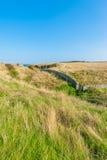 Scottish meadow Stock Image