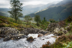 Scottish mountain river. Creek in Galloway Forest Park in the Scottish mountains royalty free stock photography