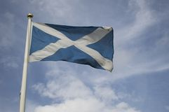 Scottish national flag blowing in the wind. Against a blue sky Royalty Free Stock Photo