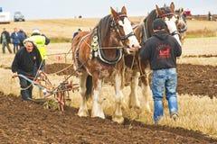 Scottish National Ploughing Championship. Royalty Free Stock Photo