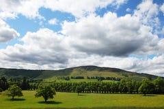 Scottish nature Royalty Free Stock Photo