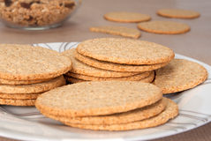 Scottish oatcakes. Fine milled Scottish oatcakes on a plate Stock Images
