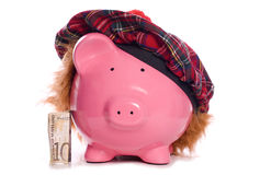 Scottish piggy bank savings Royalty Free Stock Image