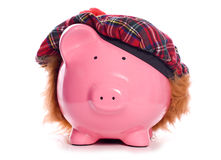 Scottish piggy bank. Studio cutout Royalty Free Stock Photography