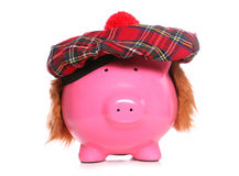 Scottish piggy bank Royalty Free Stock Photos