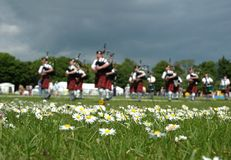 Scottish Pipe Band. Marching on the grass Stock Images