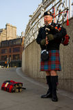 Scottish pipe man Stock Photography