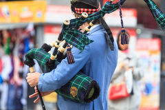 Scottish piper upper part of the body Stock Images