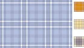 The Scottish plaid Royalty Free Stock Images