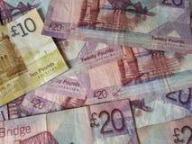 Scottish Pound notes Stock Photography