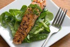 Scottish salmon Royalty Free Stock Photos