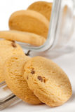 Scottish shortbread cookies. Whit chocolate from open jar, shallow DOF Royalty Free Stock Images