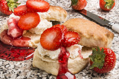 Scottish shortbread with whipped cream, sliced strawberry and sy. Freshly baked scottish shortbread with whipped cream, sliced strawberry and syrup Royalty Free Stock Image