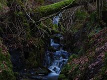 A Scottish Stream. Beautiful Scottish Stream in autumn royalty free stock image