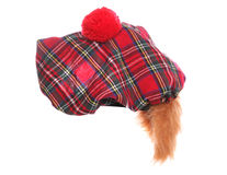 Scottish tartan hat Stock Photos