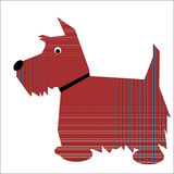 Scottish Terrier dog Stock Image