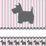 Scottish Terrier Dog. Pretty grey cairn terrier type dog on a pink and grey striped background with space for copy, vector stock illustration