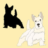 Scottish Terrier dog black silhouette realistic Royalty Free Stock Images