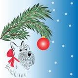 Scottish Terrier dog Stock Photo