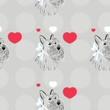 Scottish Terrier dog Stock Photos