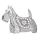 Scottish terrier dog zentangle stylized, vector, illustration, f. Reehand pencil, hand drawn, pattern. Zen art. Black and white illustration on white background Royalty Free Stock Photo