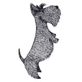 Scottish Terrier Hand drawing Isolated Object Stock Photography
