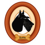 Scottish Terrier Portrait, Wood Frame, Dog Bone Treat Stock Photo