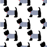 Scottish terrier in a sailor t-shirt seamless pattern. Cute dogs on white background illustration. Stock Image