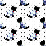 Scottish terrier in a sailor t-shirt seamless pattern. Sitting dogs on white polka dots background. Royalty Free Stock Images
