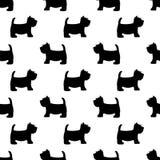 Scottish terrier seamless pattern. Royalty Free Stock Image