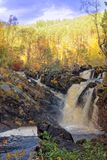 Scottish Waterfall, the Rogie Falls, in Autumn Royalty Free Stock Photography