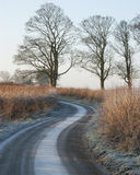 Scottish Winding Frosty lane Royalty Free Stock Photo