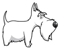 Scottisth terrier. Vector Isolated cartoon scottish terrier Vector Illustration