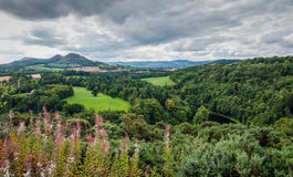 Scotts Ansicht in die schottischen Grenzen, Schottland Lizenzfreie Stockfotos