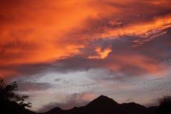 Scottsdale als Vorstadt-ranchland, die Stadt ist ein sportlicher dennoch entspannter Erholungsortbestimmungsort geworden, der für stockfotografie