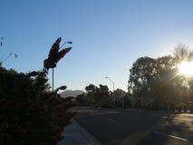 Scottsdale als Vorstadt-ranchland, die Stadt ist ein sportlicher dennoch entspannter Erholungsortbestimmungsort geworden, der für lizenzfreie stockfotos