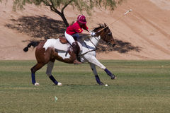 Scottsdale Arizona Polo Match Royalty Free Stock Image