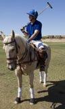 Scottsdale Arizona Polo Match Stock Photos