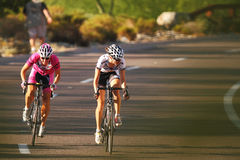 Scottsdale Cycling Festival Criterium Royalty Free Stock Image