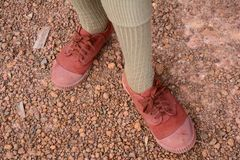 Scout. The boy scout  in his shoe and sock  form Stock Images